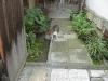 fukui_1005-03